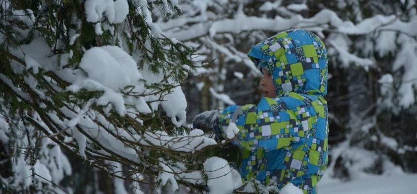 Když v Hemojunioru sněží…